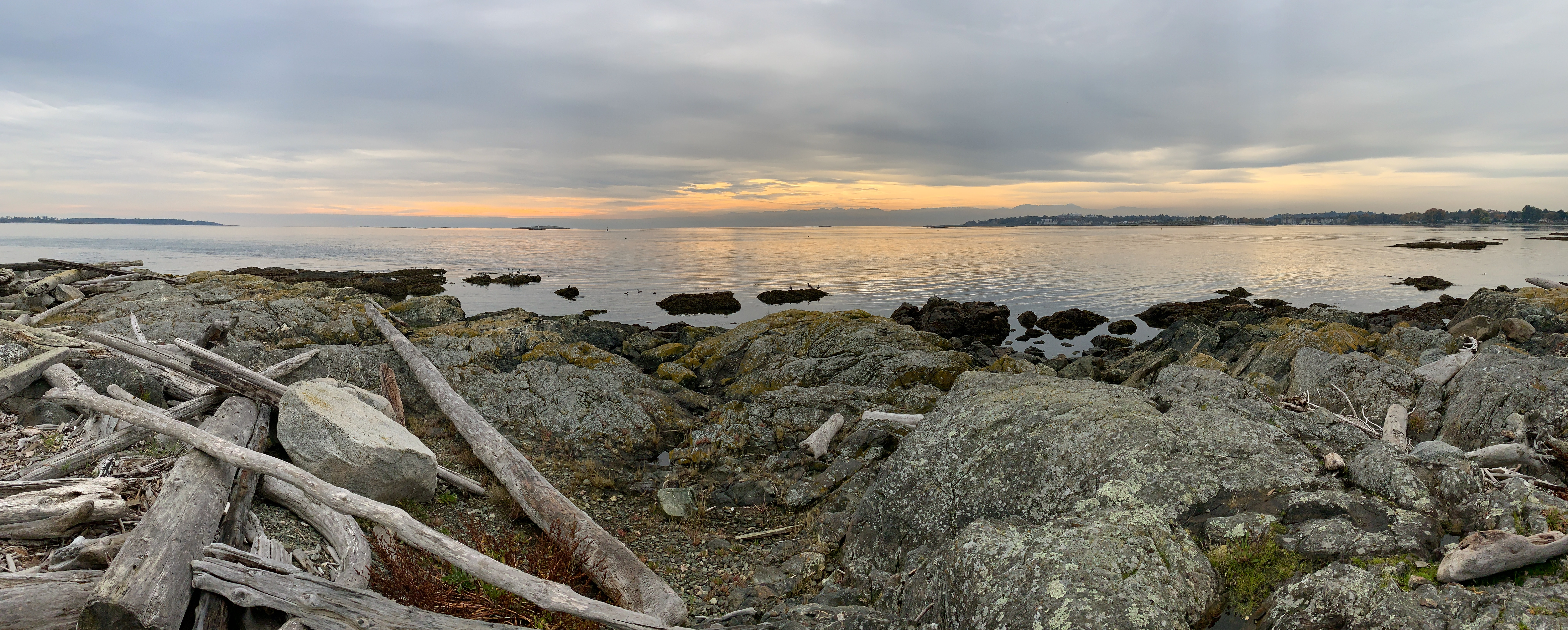 https://rasc.ca/sites/default/files/morning-colours-reflected-off-the-salish-sea_50954319312_o.jpg