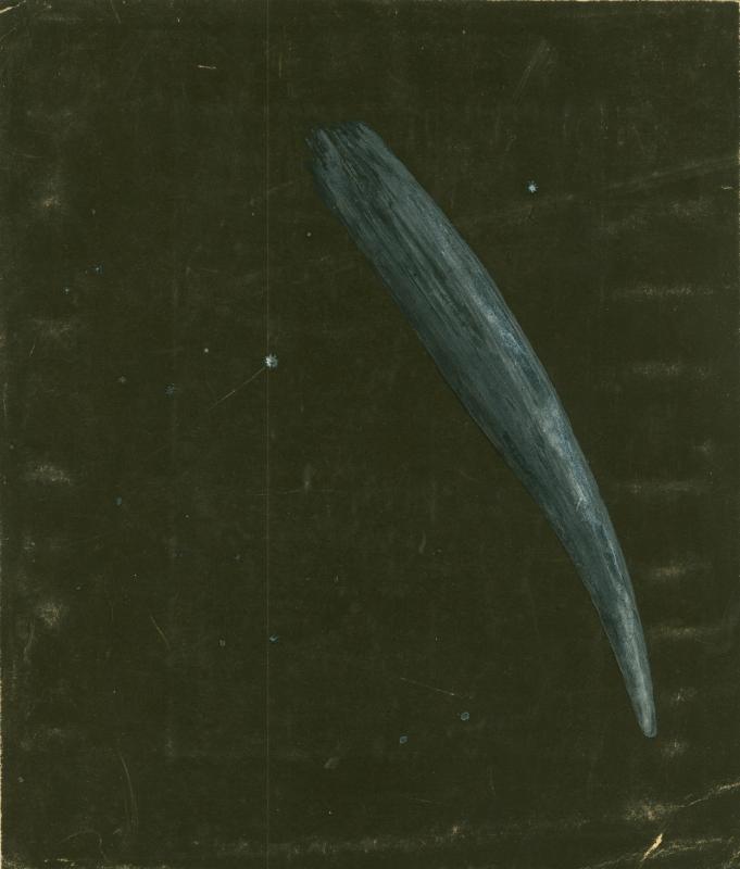 Great Comet of 1882?