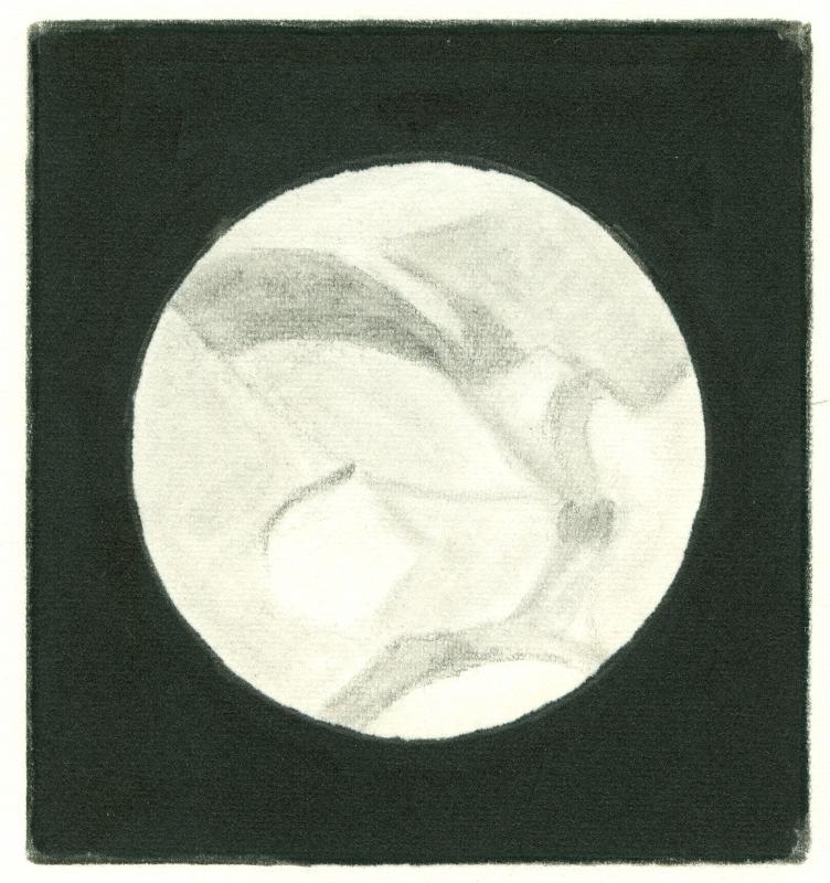 Mars 196101032325