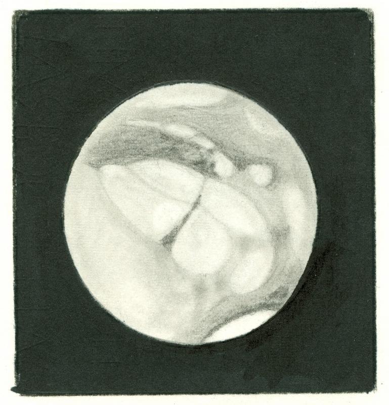 Mars 196102112245