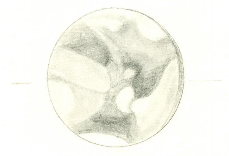 Mars 196102062300
