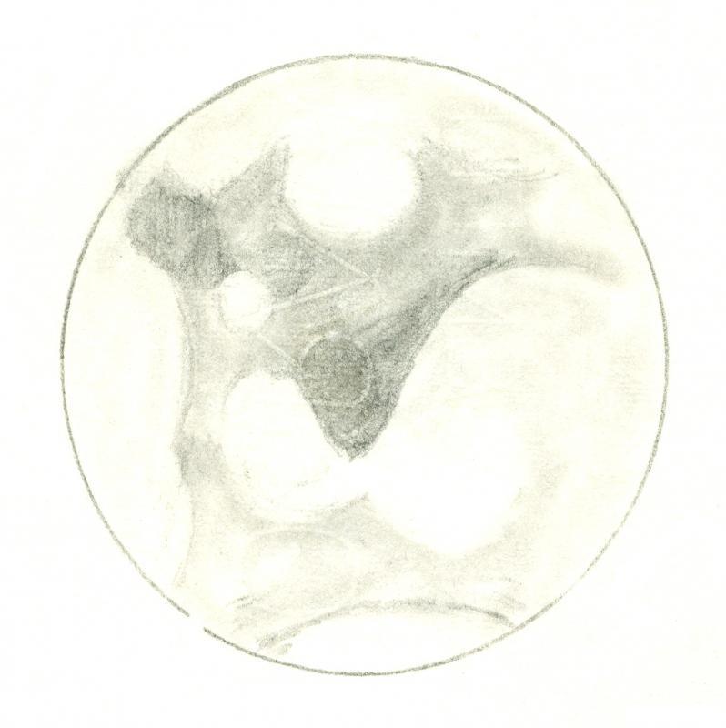 Mars 196101050425
