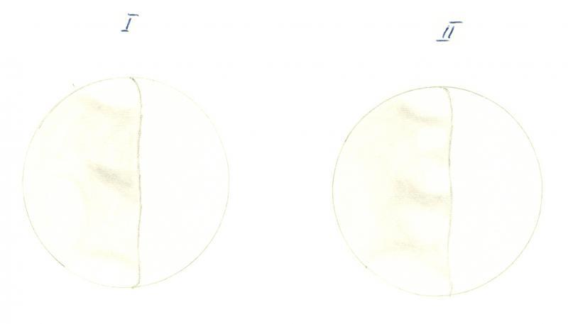 Venus 196012202100