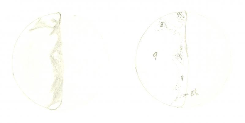 Venus 196101141925