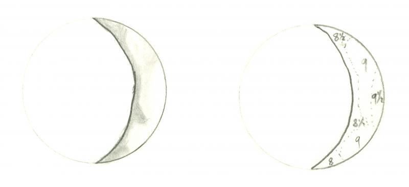 Venus 196105101650